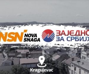 NSN/ZZS: Štetočine oterati u političku prošlost